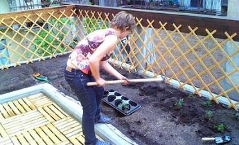 Orti e giardini sui tetti: quali vantaggi per l'ambiente e il portafogli?