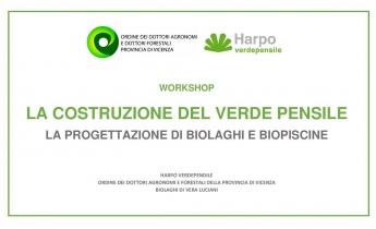 29 giugno 2019 - dalle 14:00 alle 19:00 - presso la sede dell'Odaf Vicenza