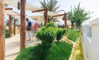 Harpo verdepensile - Expo Milano 2015 - Oman e Qatar