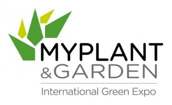MYPLANT&GARDEN_harpo verdepensile