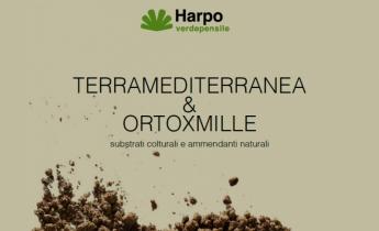 Harpo verdepensile - Brochure Terra Mediterranea & OrtoXmille