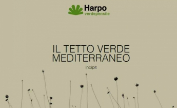Il Tetto Verde Mediterraneo - Harpo Verdepensile