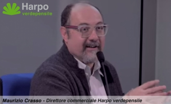 harpo_verdepensile_maurizio_crasso_news