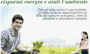 Harpo verdepensile - benefici tetti verdi - top salute - elle