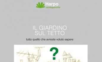 il giardino sul tetto: tutto quello che avreste voluto sapere_harpo verdepensile