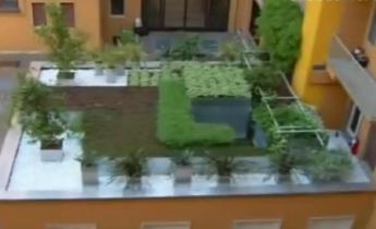Impermeabilizzazione tetto - Harpo Verde Pensile