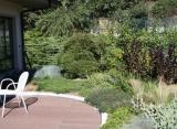 Estensivo a tappezzanti arbustive - Verdepensile - Harpo Group